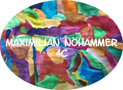 Maximilian_Nöhammer_4C